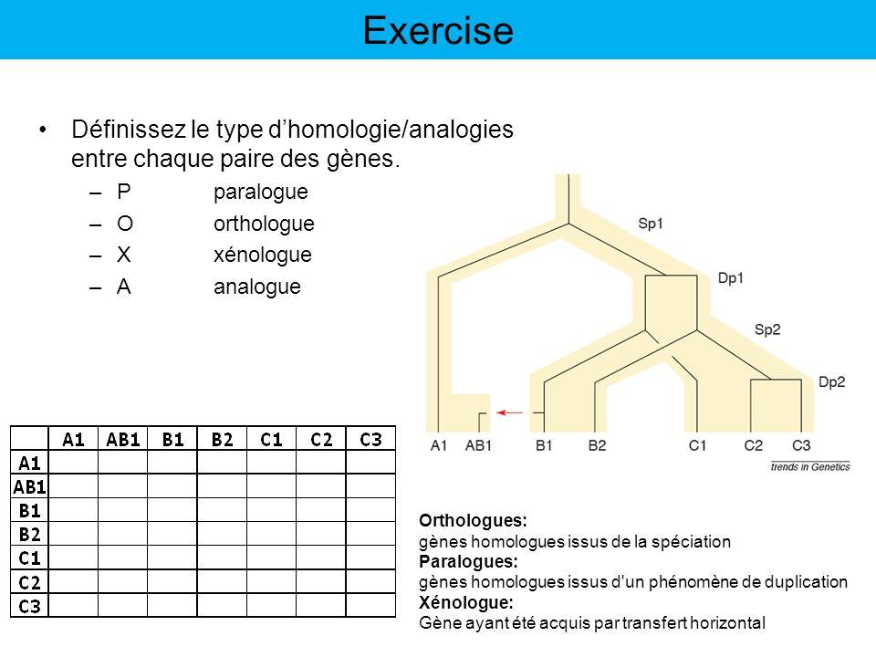 Exercise Définissez le type dhomologie/analogies entre chaque paire des gènes. –Pparalogue –Oorthologue –Xxénologue –Aanalogue Orthologues: gènes homo