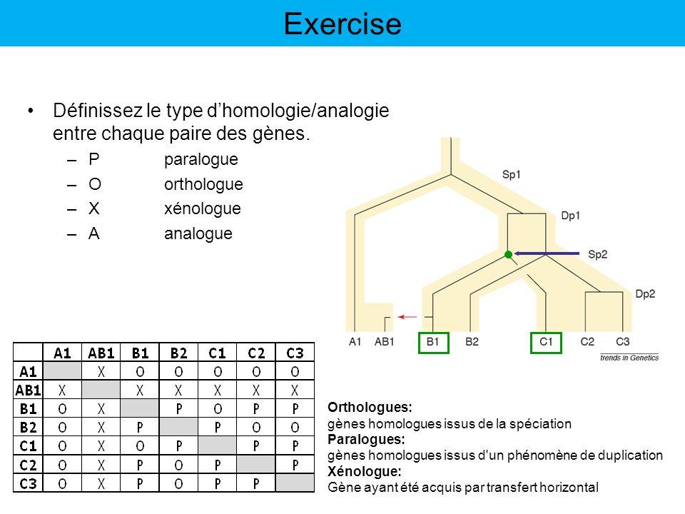 Exercise Orthologues: gènes homologues issus de la spéciation Paralogues: gènes homologues issus d'un phénomène de duplication Xénologue: Gène ayant é