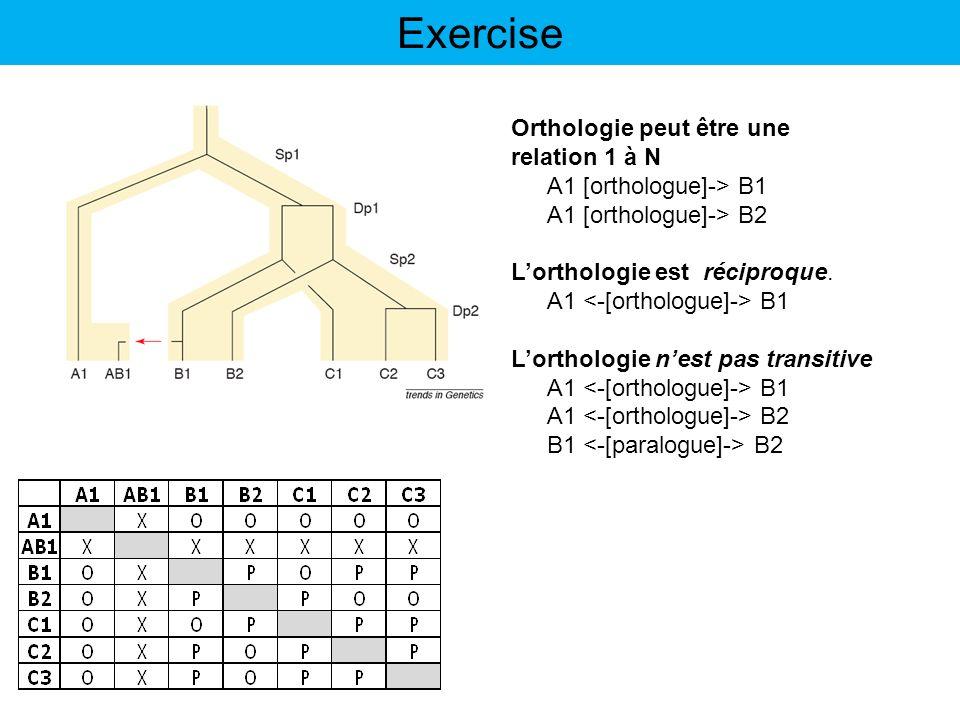 Exercise Orthologie peut être une relation 1 à N A1 [orthologue]-> B1 A1 [orthologue]-> B2 Lorthologie est réciproque. A1 B1 Lorthologie nest pas tran