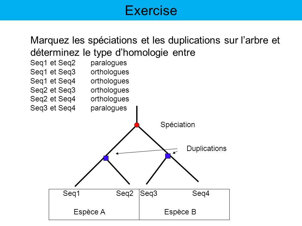 Espèce A Espèce B Seq1 Seq2 Seq3 Seq4 Marquez les spéciations et les duplications sur larbre et déterminez le type dhomologie entre Seq1 et Seq2paralo