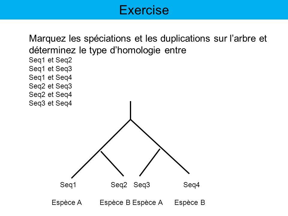 Espèce A Espèce B Seq1 Seq2 Seq3 Seq4 Marquez les spéciations et les duplications sur larbre et déterminez le type dhomologie entre Seq1 et Seq2 Seq1