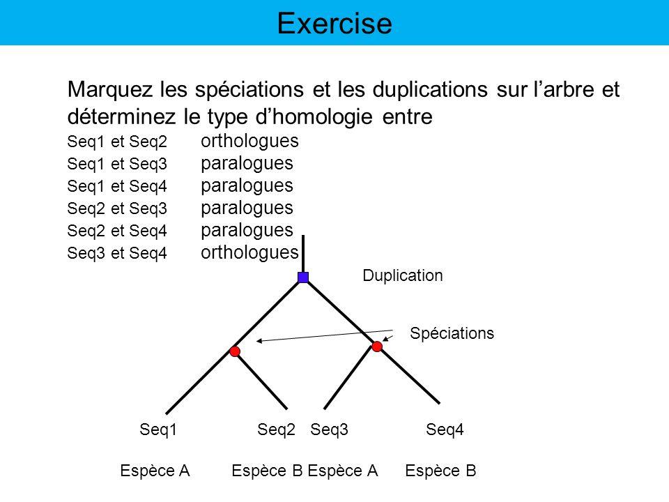 Espèce A Espèce B Seq1 Seq2 Seq3 Seq4 Marquez les spéciations et les duplications sur larbre et déterminez le type dhomologie entre Seq1 et Seq2 ortho