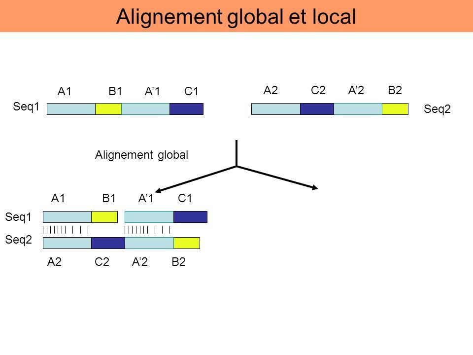 A1 B1 A1 C1 A2 C2 A2 B2 Seq1 Seq2 Alignement global A1 B1 A1 C1 A2 C2 A2 B2 Seq2 Seq1 Alignement global et local