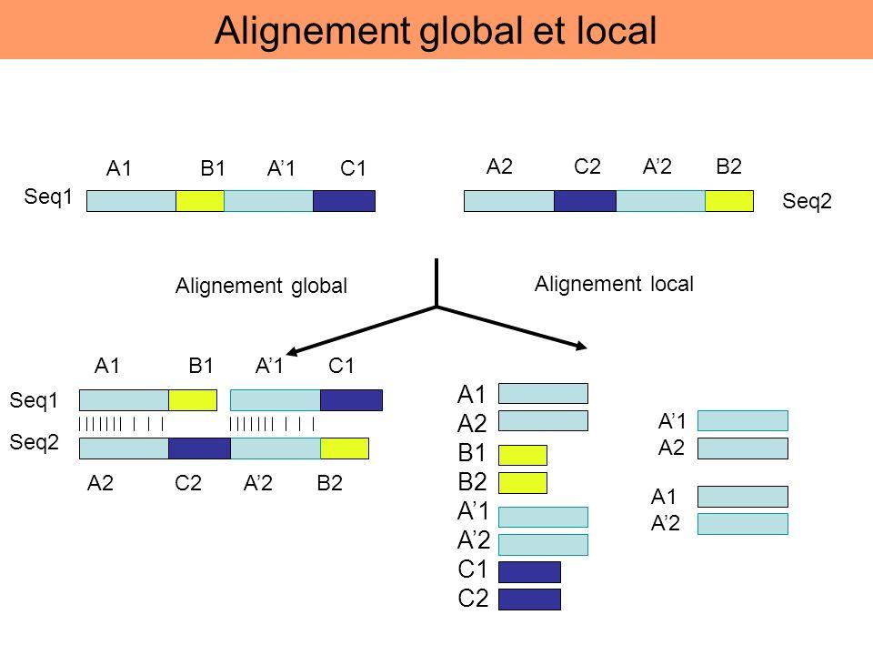 A1 B1 A1 C1 A2 C2 A2 B2 Seq1 Seq2 Alignement global Alignement local A1 B1 A1 C1 A2 C2 A2 B2 Seq2 Seq1 A1 A2 B1 B2 A1 A2 C1 C2 A1 A2 A1 A2 Alignement