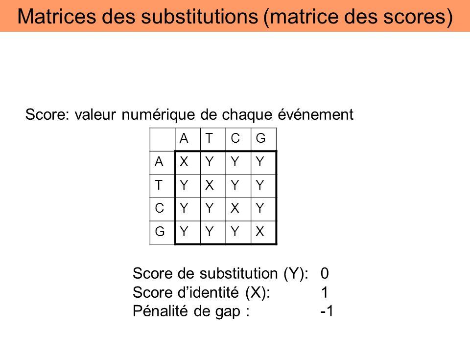 Score: valeur numérique de chaque événement Score de substitution (Y): 0 Score didentité (X):1 Pénalité de gap : -1 ATCG AXYYY TYXYY CYYXY GYYYX Matri