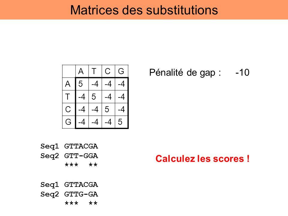 ATCG A5-4 T 5 C 5 G 5 Pénalité de gap : -10 Seq1 GTTACGA Seq2 GTT-GGA *** ** Seq1 GTTACGA Seq2 GTTG-GA *** ** Calculez les scores ! Matrices des subst