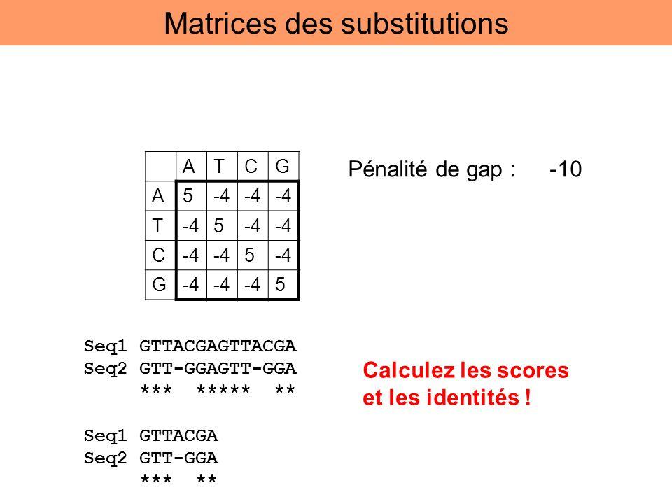 ATCG A5-4 T 5 C 5 G 5 Pénalité de gap : -10 Seq1 GTTACGAGTTACGA Seq2 GTT-GGAGTT-GGA *** ***** ** Seq1 GTTACGA Seq2 GTT-GGA *** ** Calculez les scores
