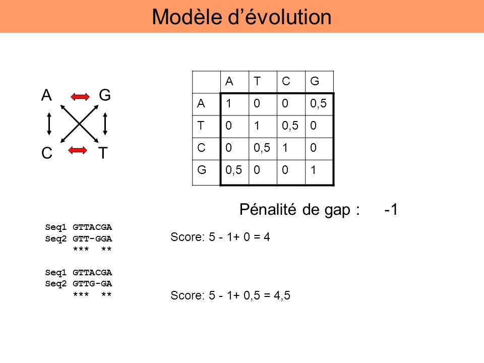 A G C T ATCG A1000,5 T01 0 C0 10 G 001 Seq1 GTTACGA Seq2 GTT-GGA *** ** Seq1 GTTACGA Seq2 GTTG-GA *** ** Score: 5 - 1+ 0 = 4 Score: 5 - 1+ 0,5 = 4,5 P