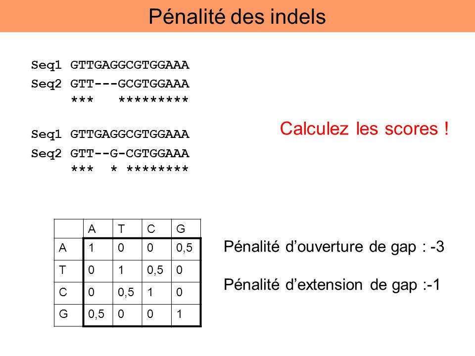 ATCG A1000,5 T01 0 C0 10 G 001 Pénalité douverture de gap : -3 Pénalité dextension de gap :-1 Calculez les scores ! Pénalité des indels Seq1 GTTGAGGCG