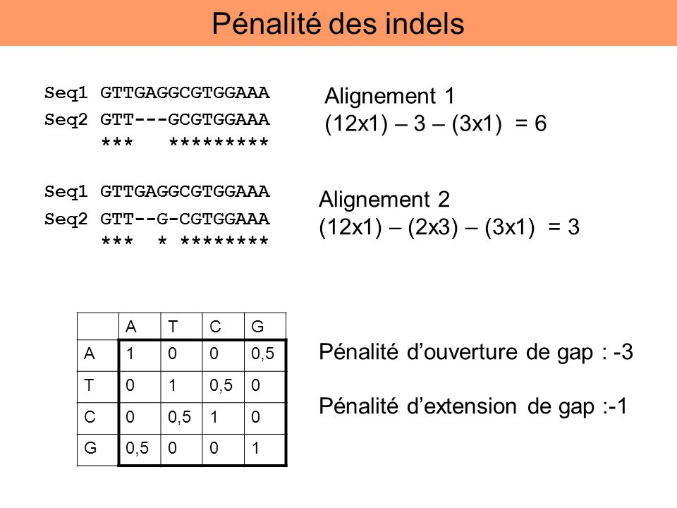 Alignement 1 (12x1) – 3 – (3x1) = 6 ATCG A1000,5 T01 0 C0 10 G 001 Pénalité douverture de gap : -3 Pénalité dextension de gap :-1 Alignement 2 (12x1)