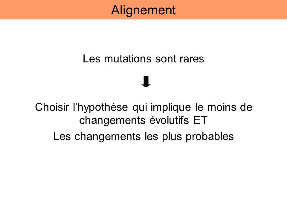 Les mutations sont rares Choisir lhypothèse qui implique le moins de changements évolutifs ET Les changements les plus probables Alignement