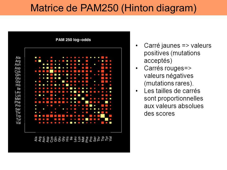 Matrice de PAM250 (Hinton diagram) Carré jaunes => valeurs positives (mutations acceptés) Carrés rouges=> valeurs négatives (mutations rares). Les tai