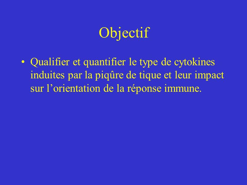 Objectif Qualifier et quantifier le type de cytokines induites par la piqûre de tique et leur impact sur lorientation de la réponse immune.