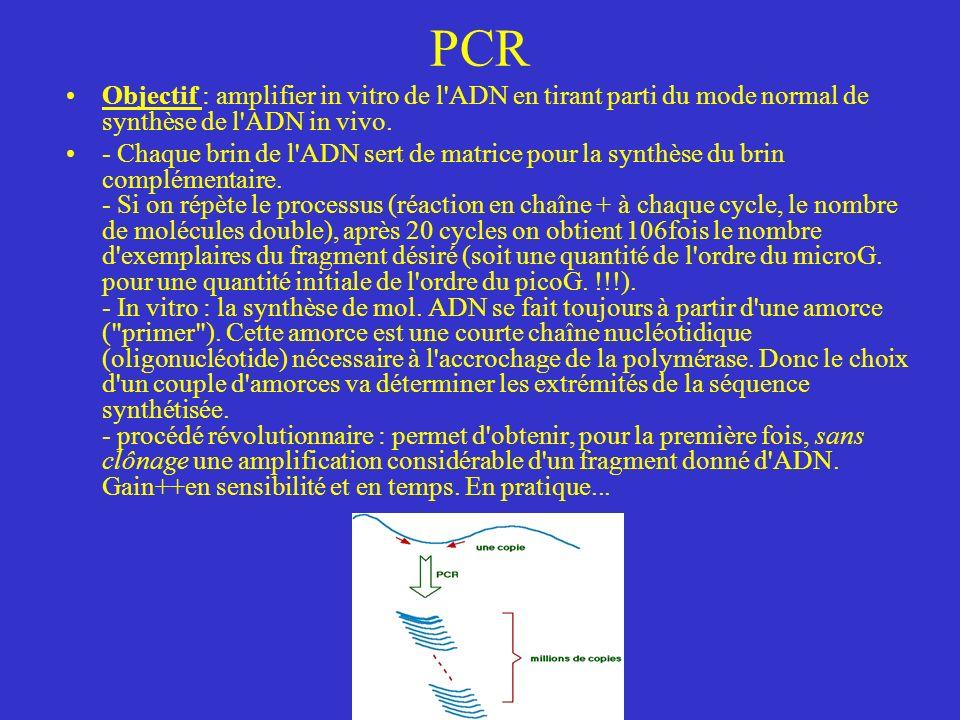 PCR Objectif : amplifier in vitro de l ADN en tirant parti du mode normal de synthèse de l ADN in vivo.