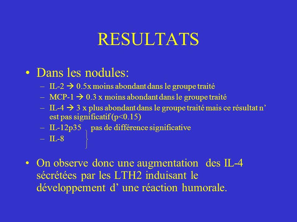 RESULTATS Dans les nodules: –IL-2 0.5x moins abondant dans le groupe traité –MCP-1 0.3 x moins abondant dans le groupe traité –IL-4 3 x plus abondant dans le groupe traité mais ce résultat n est pas significatif (p<0.15) –IL-12p35 pas de différence significative –IL-8 On observe donc une augmentation des IL-4 sécrétées par les LTH2 induisant le développement d une réaction humorale.