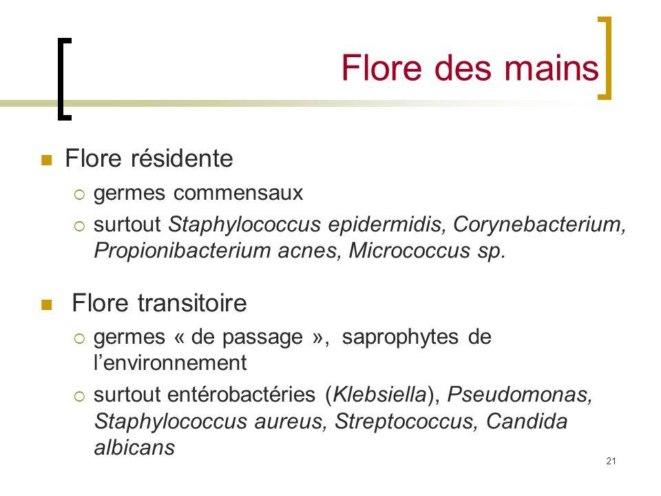 21 Flore des mains Flore résidente germes commensaux surtout Staphylococcus epidermidis, Corynebacterium, Propionibacterium acnes, Micrococcus sp. Flo