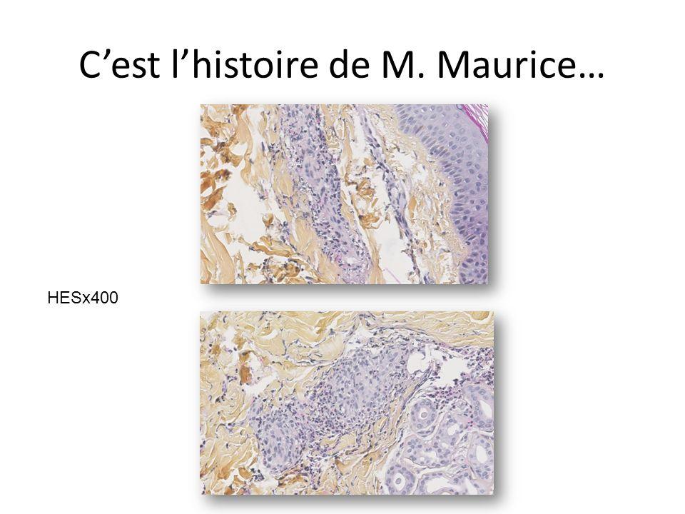 Cest lhistoire de M. Maurice… HESx400