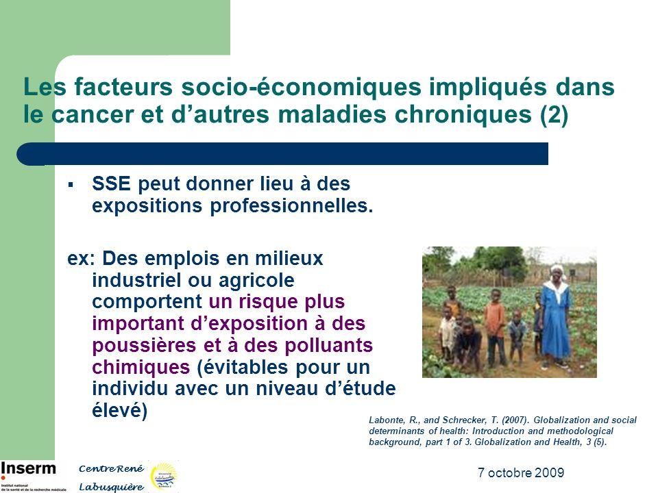7 octobre 2009 SSE peut donner lieu à des expositions professionnelles. ex: Des emplois en milieux industriel ou agricole comportent un risque plus im