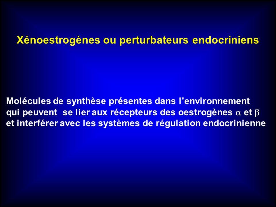 Xénoestrogènes ou perturbateurs endocriniens Molécules de synthèse présentes dans lenvironnement qui peuvent se lier aux récepteurs des oestrogènes et