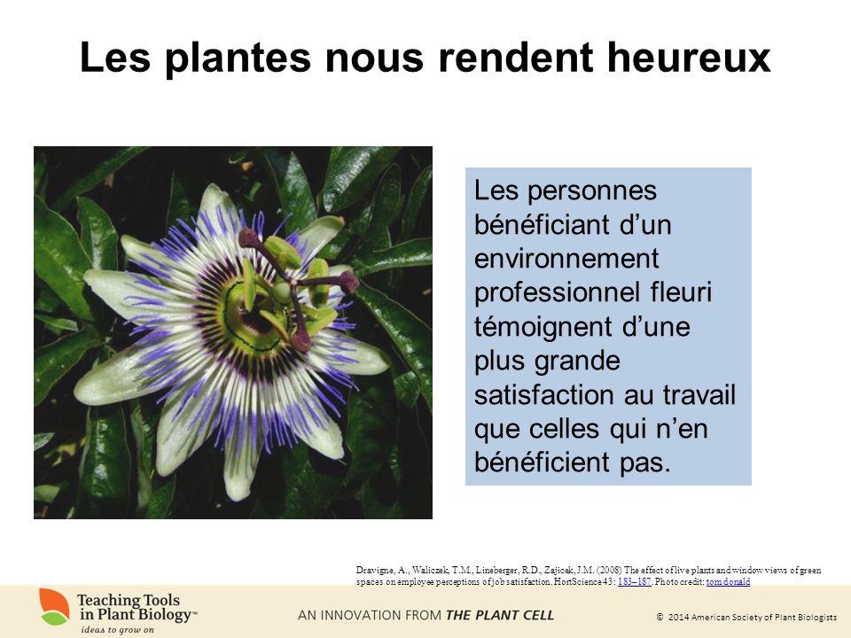 © 2014 American Society of Plant Biologists Les plantes peuvent servir à la production de vaccins et danticorps sûrs et peu coûteux OU?