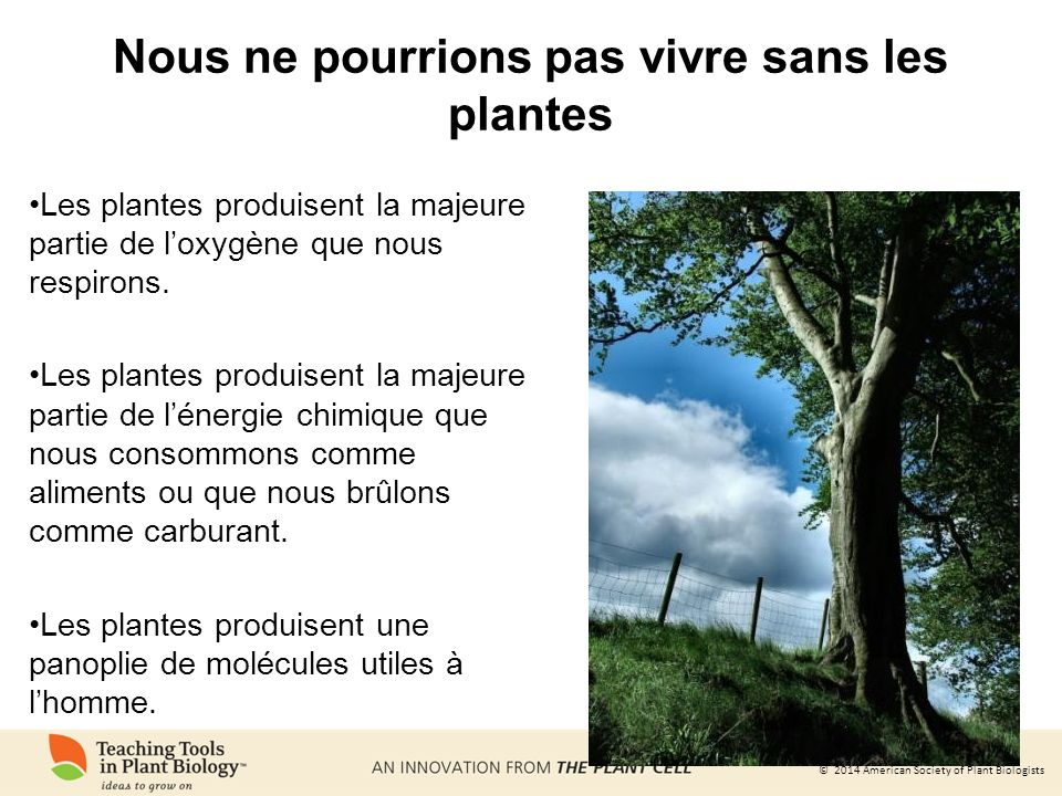 © 2014 American Society of Plant Biologists Nous ne pouvons pas vivre sans oxygène.