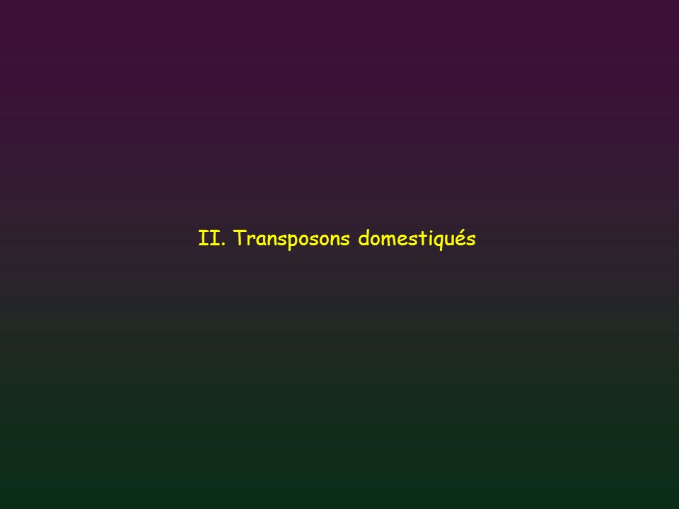 II. Transposons domestiqués