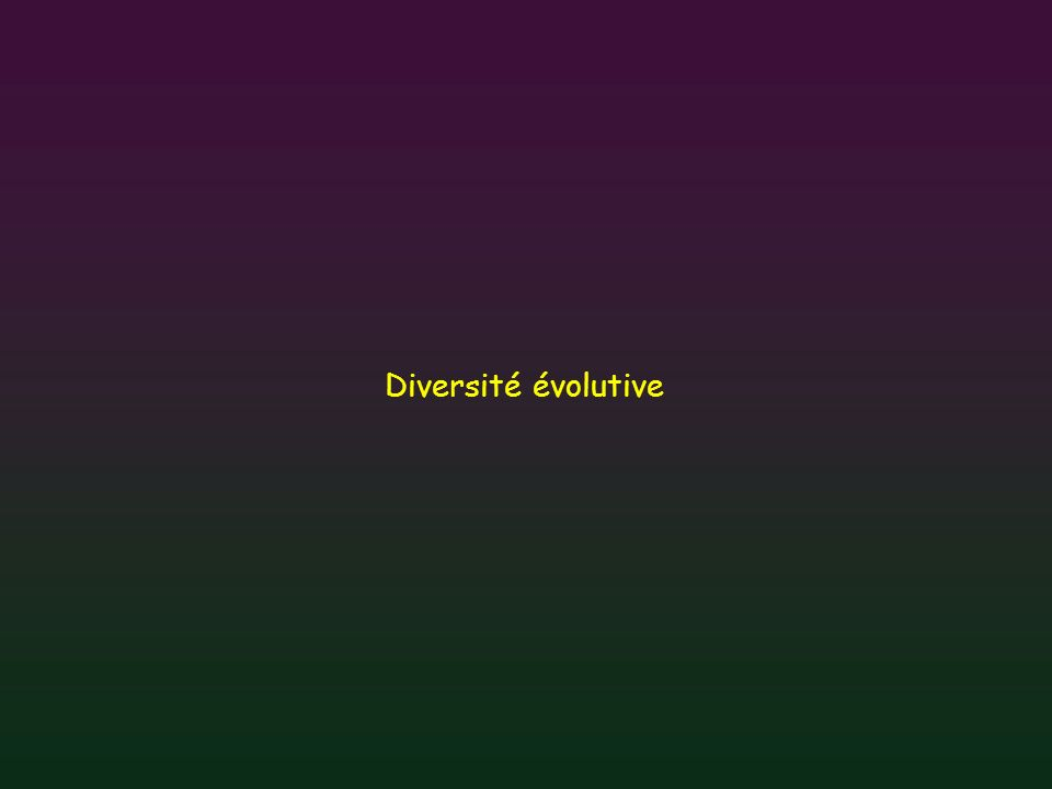 Diversité évolutive
