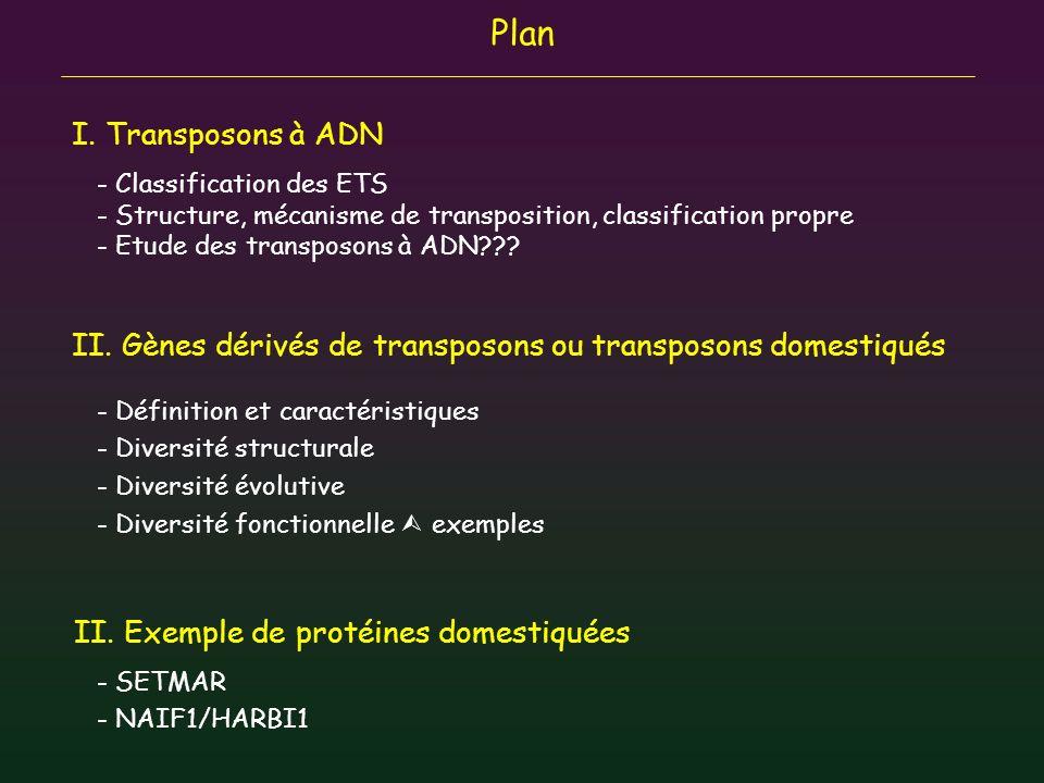 Plan I. Transposons à ADN II. Gènes dérivés de transposons ou transposons domestiqués - Définition et caractéristiques - Diversité structurale - Diver