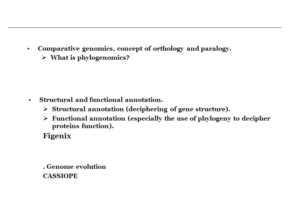 Comparative genomics, concept of orthology and paralogy.