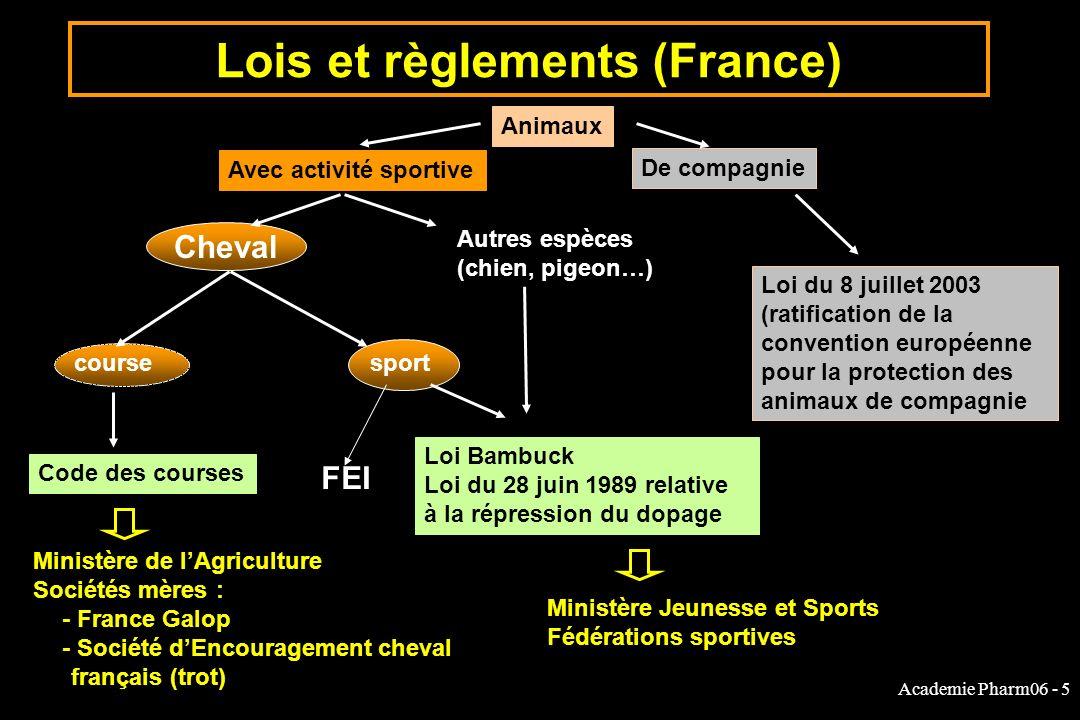 Academie Pharm06 - 5 Cheval Lois et règlements (France) Animaux Avec activité sportive De compagnie Autres espèces (chien, pigeon…) coursesport Code d