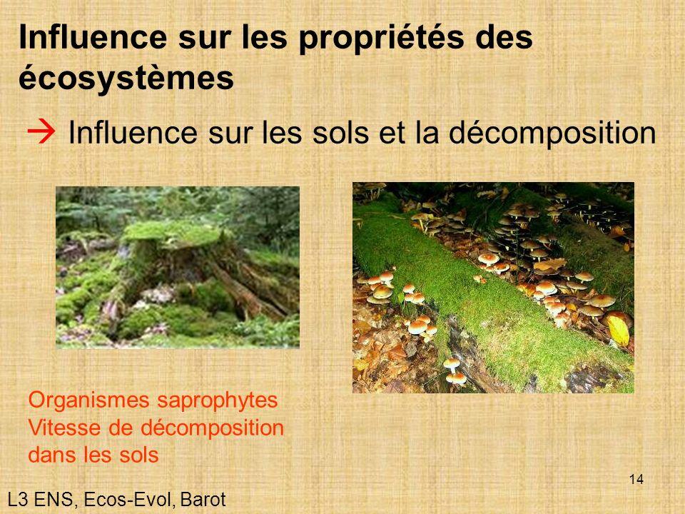 14 Influence sur les propriétés des écosystèmes Influence sur les sols et la décomposition Organismes saprophytes Vitesse de décomposition dans les so