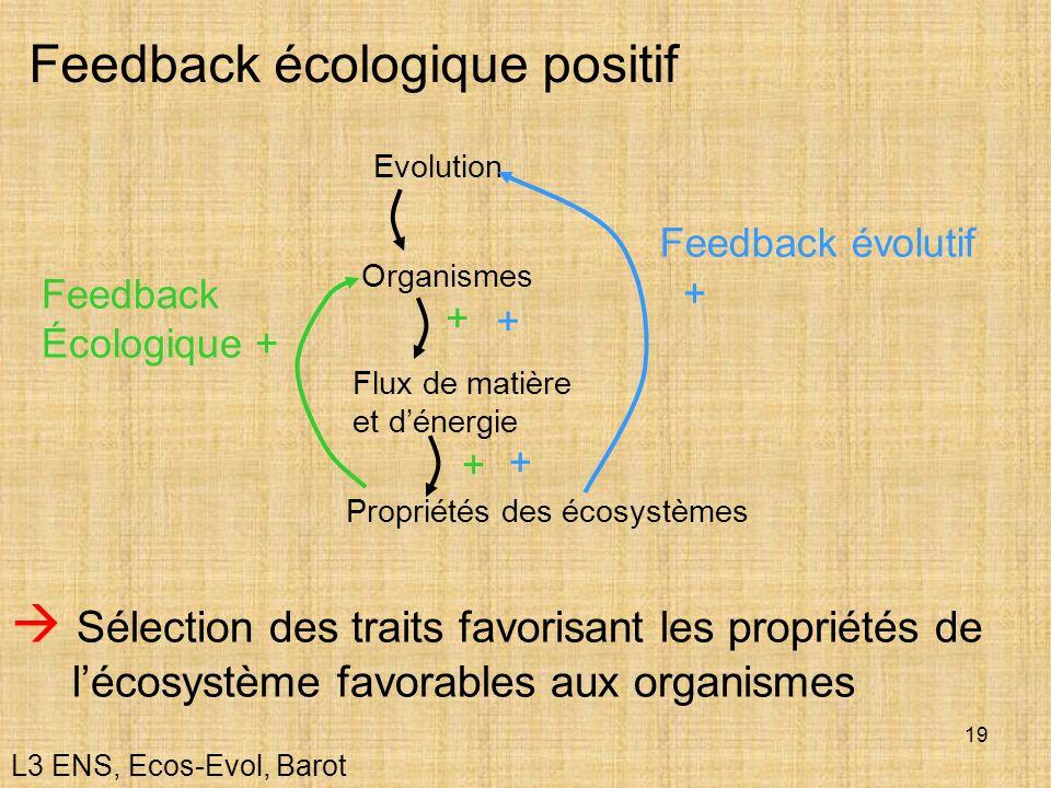 19 Feedback écologique positif Organismes Flux de matière et dénergie Evolution Propriétés des écosystèmes Feedback Écologique + Feedback évolutif + +