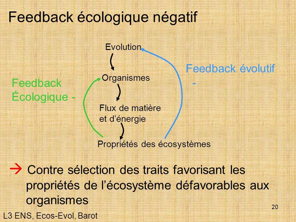 20 Feedback écologique négatif Organismes Flux de matière et dénergie Evolution Propriétés des écosystèmes Feedback Écologique - Feedback évolutif - C