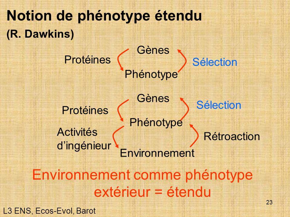23 Notion de phénotype étendu (R. Dawkins) Environnement comme phénotype extérieur = étendu Gènes Phénotype Protéines Sélection Gènes Phénotype Protéi
