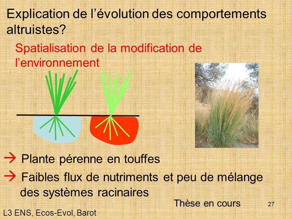 27 Explication de lévolution des comportements altruistes? Spatialisation de la modification de lenvironnement Plante pérenne en touffes Faibles flux