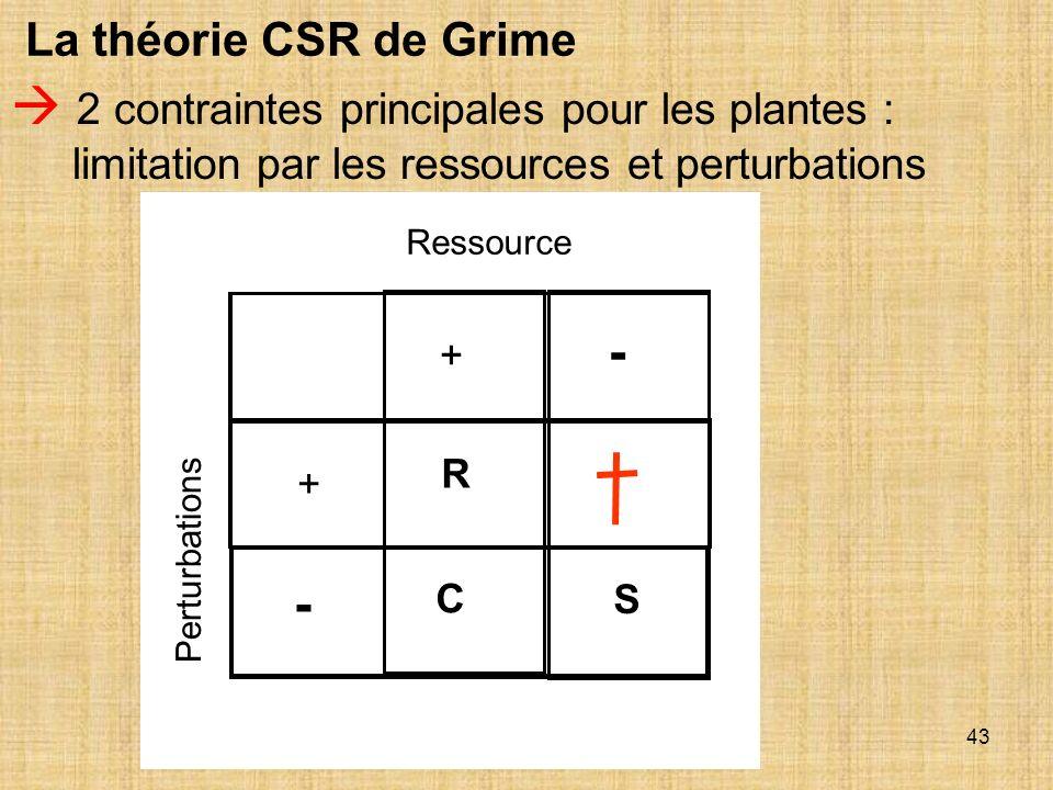 43 La théorie CSR de Grime 2 contraintes principales pour les plantes : limitation par les ressources et perturbations Ressource Perturbations + - - +