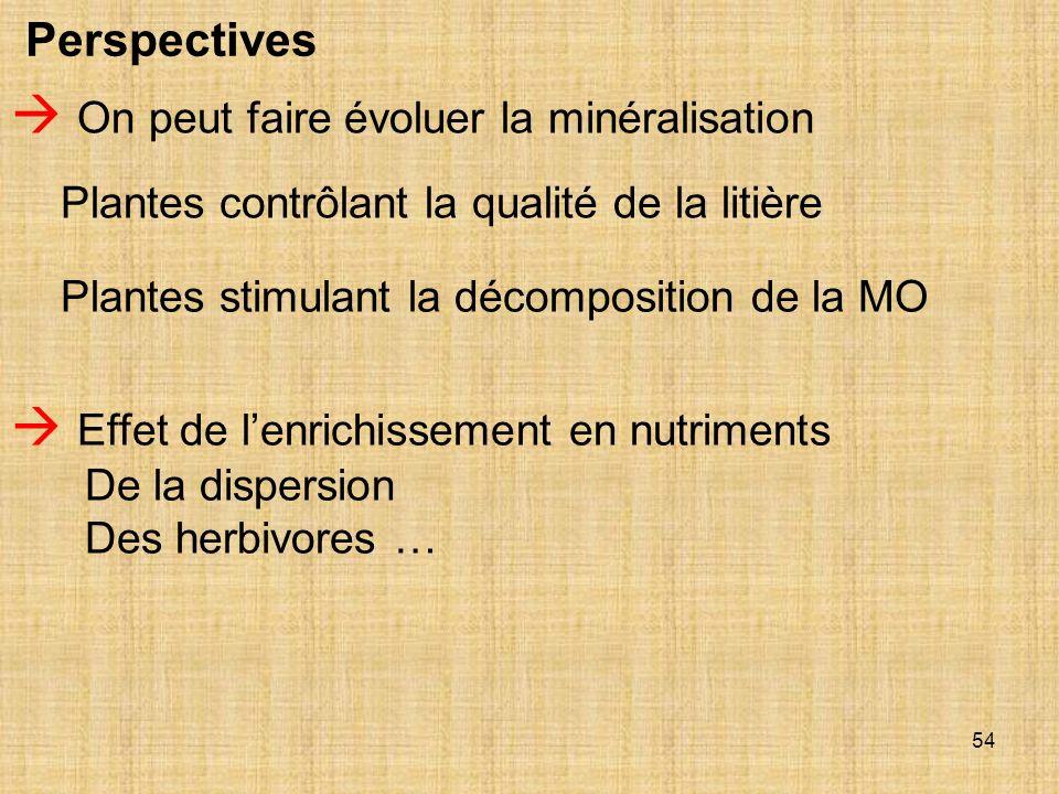 54 Perspectives On peut faire évoluer la minéralisation Plantes contrôlant la qualité de la litière Plantes stimulant la décomposition de la MO Effet