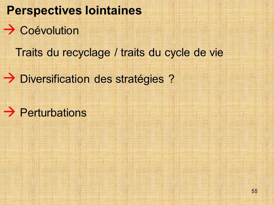 55 Perspectives lointaines Coévolution Traits du recyclage / traits du cycle de vie Diversification des stratégies ? Perturbations