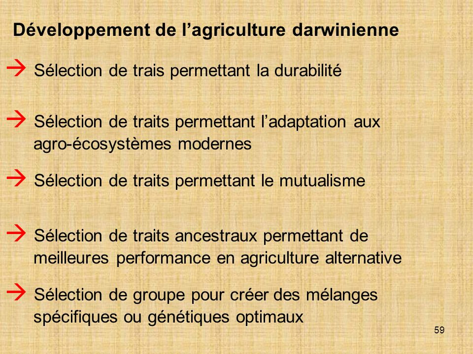 59 Développement de lagriculture darwinienne Sélection de trais permettant la durabilité Sélection de traits permettant le mutualisme Sélection de tra