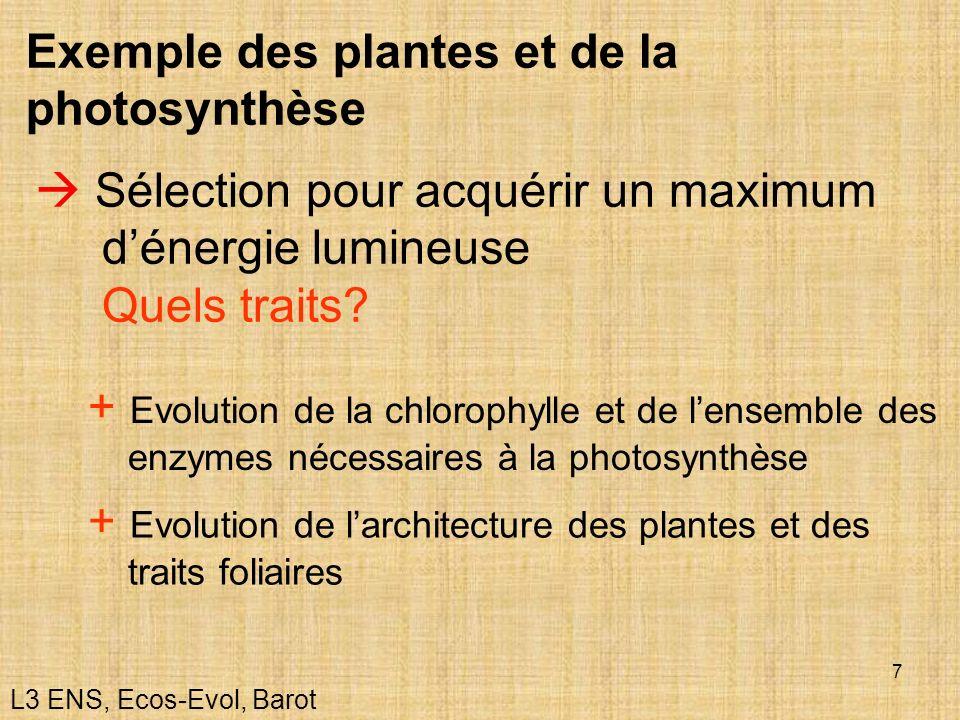 7 Exemple des plantes et de la photosynthèse Sélection pour acquérir un maximum dénergie lumineuse Quels traits? + Evolution de la chlorophylle et de
