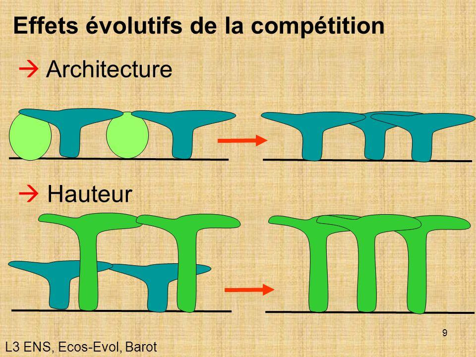 9 Effets évolutifs de la compétition Architecture Hauteur L3 ENS, Ecos-Evol, Barot