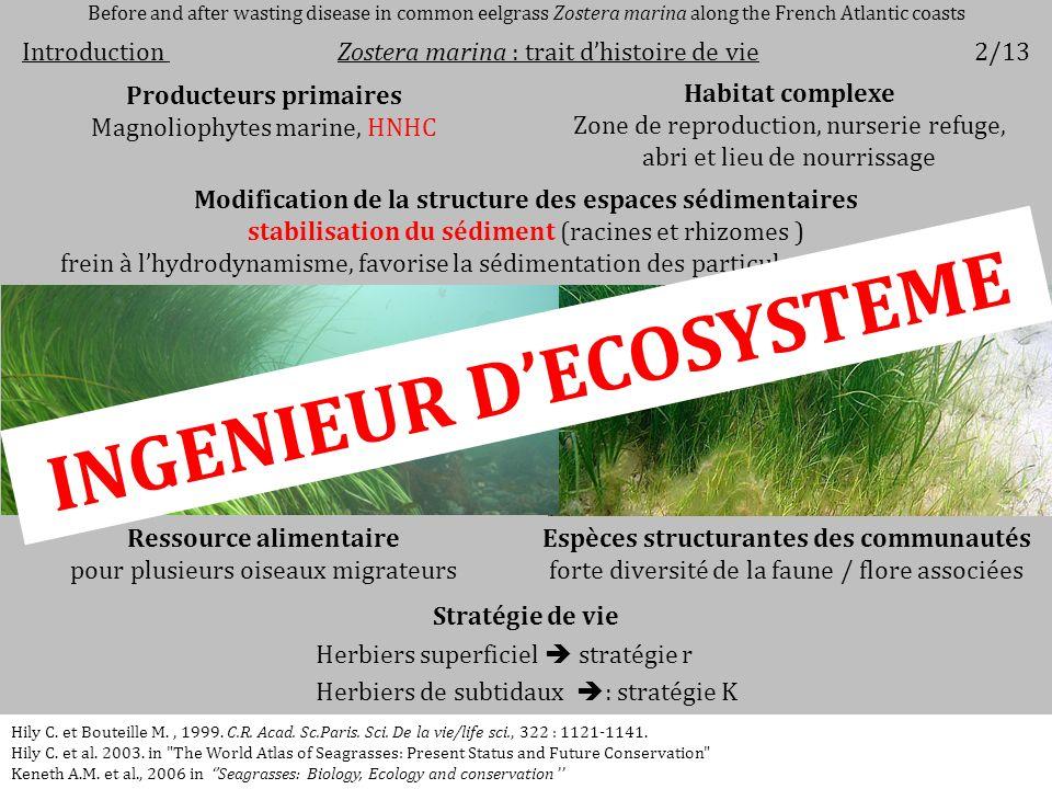 Ressource alimentaire pour plusieurs oiseaux migrateurs Stratégie de vie Herbiers superficiel stratégie r Herbiers de subtidaux : stratégie K Modifica