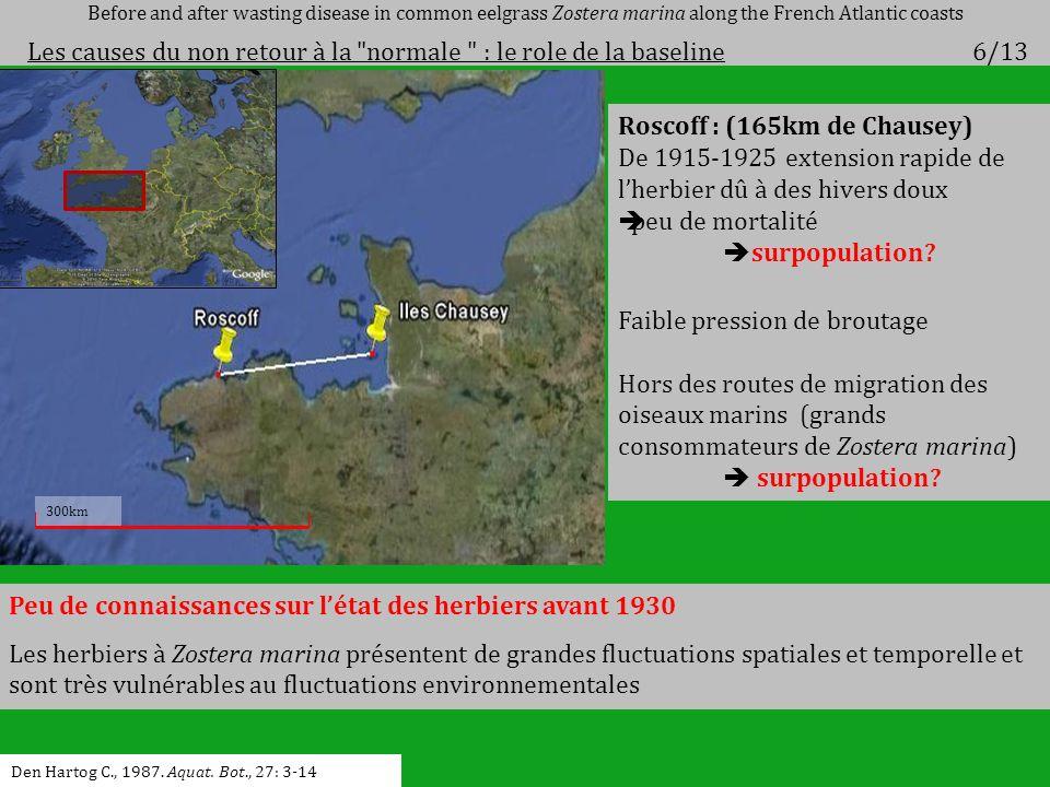 Roscoff : (165km de Chausey) De 1915-1925 extension rapide de lherbier dû à des hivers doux peu de mortalité surpopulation? Faible pression de broutag