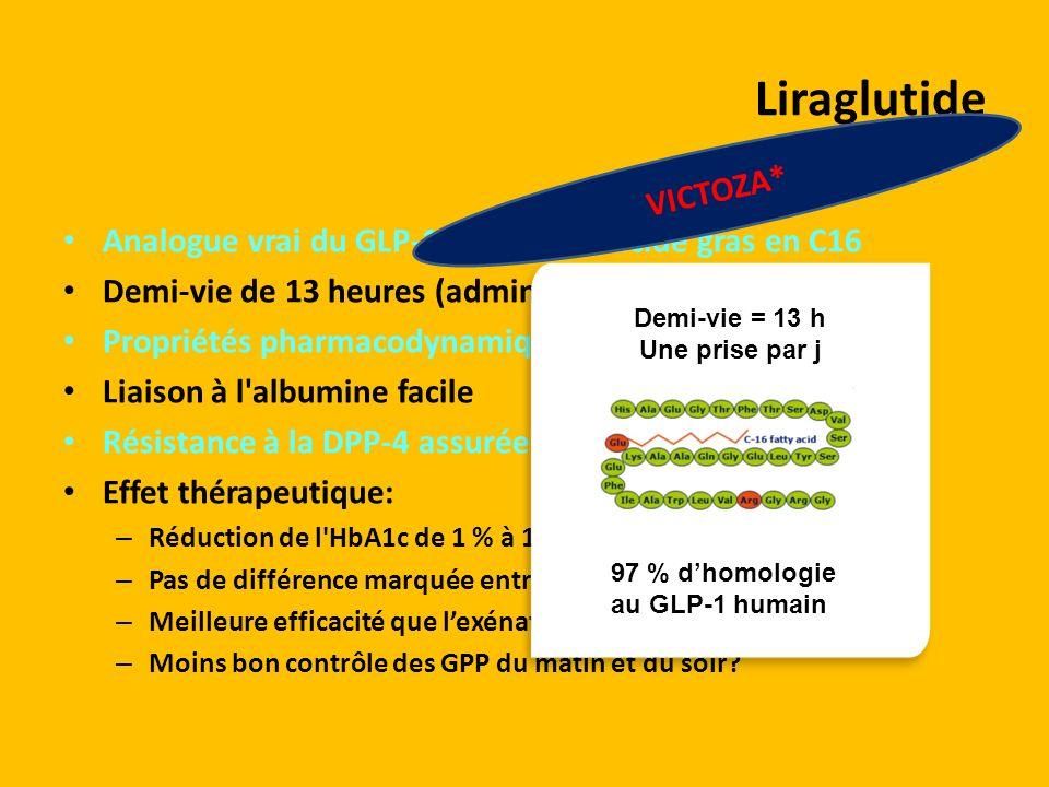 Analogue vrai du GLP-1 greffé d'un acide gras en C16 Demi-vie de 13 heures (administration une fois par jour) Propriétés pharmacodynamiques = exénatid