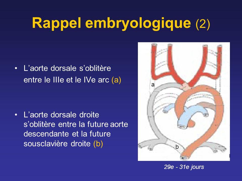Rappel embryologique (2) Laorte dorsale soblitère entre le IIIe et le IVe arc (a) Laorte dorsale droite soblitère entre la future aorte descendante et la future sousclavière droite (b) 29e - 31e jours a b