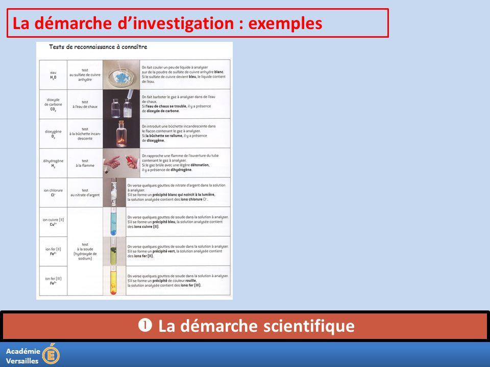 Académie Versailles La démarche scientifique La démarche dinvestigation : exemples