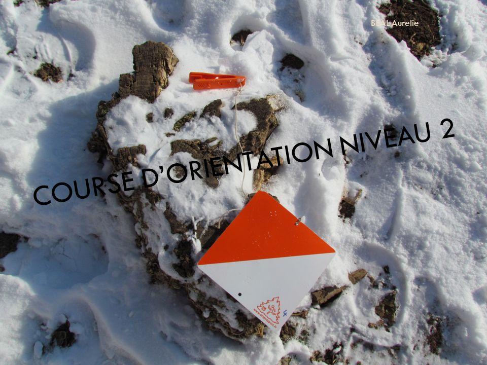 COURSE DORIENTATION NIVEAU 2 BEAL Aurelie