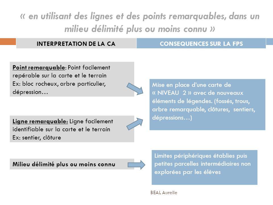 « en utilisant des lignes et des points remarquables, dans un milieu délimité plus ou moins connu » INTERPRETATION DE LA CACONSEQUENCES SUR LA FPS Mil