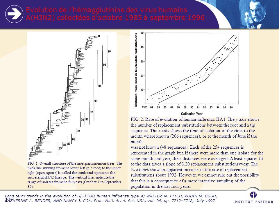 11 Evolution de lhémagglutinine des virus humains A(H3N2) collectées doctobre 1985 à septembre 1996 Long term trends in the evolution of H(3) HA1 human influenza type A; WALTER M.