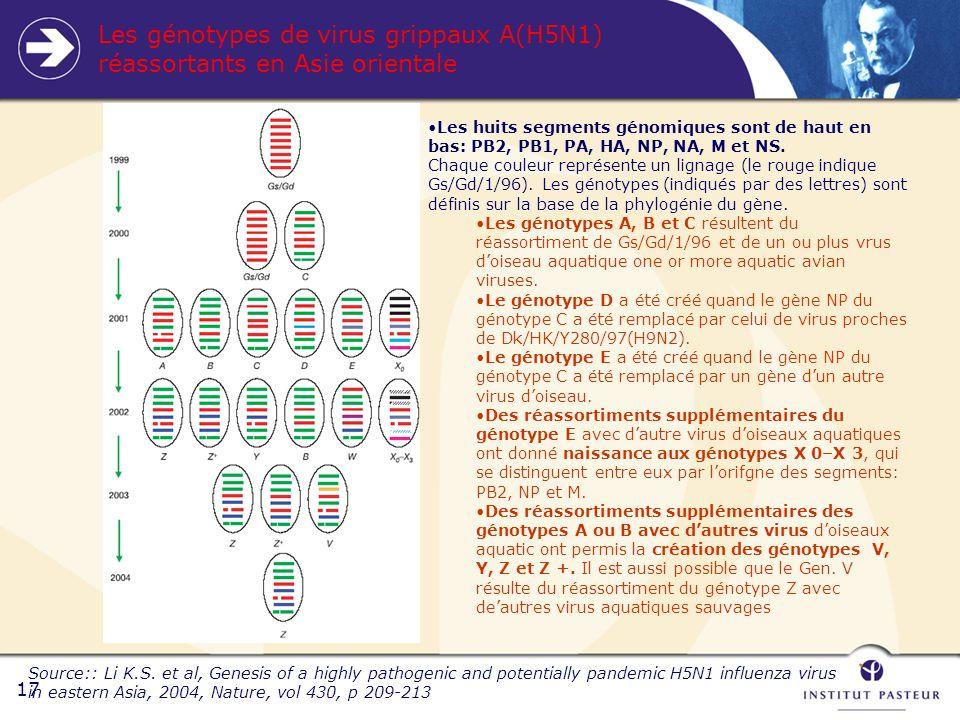 17 Les génotypes de virus grippaux A(H5N1) réassortants en Asie orientale Source:: Li K.S.